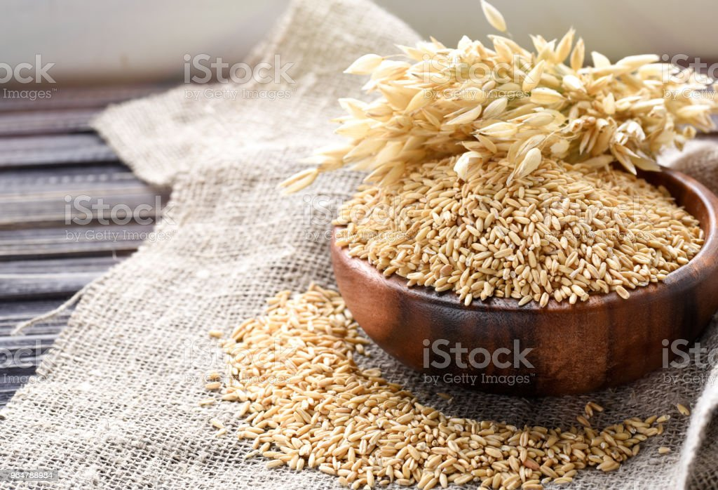 Ears of oats and oatmeal, whole grains in bowl on table. Uncooked grains for oatmeal porridge royalty-free stock photo