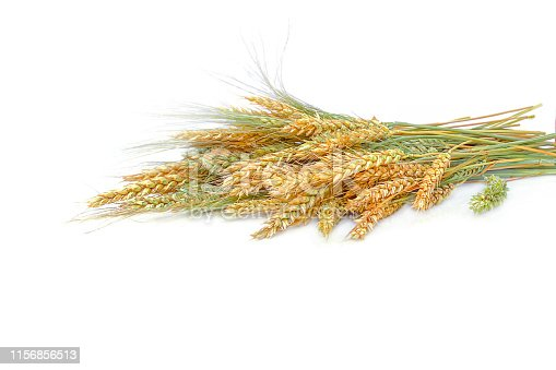 Ears of wheat and rye, bouquet isolated on white background. The concept of a rich harvest or packaging design. Horizontal. Selective focus, close-up.