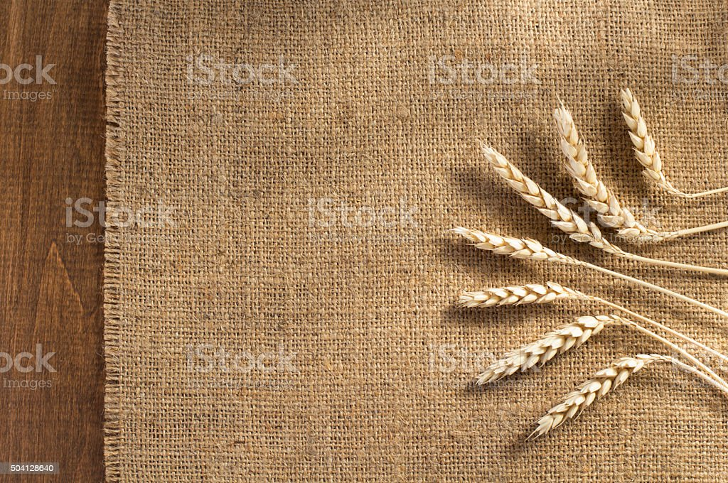 ears of wheat on wood stock photo