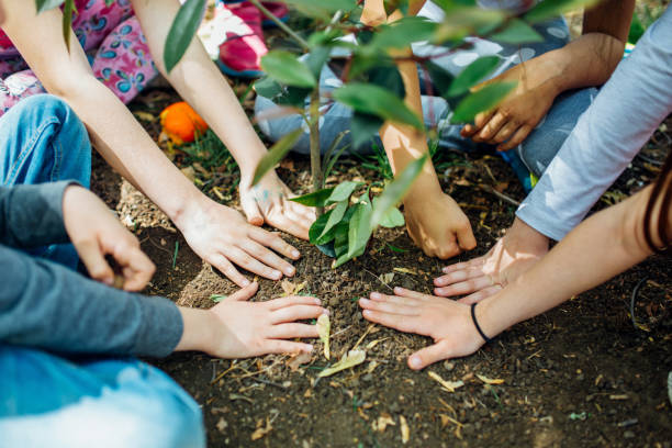 earth day, planting the trees - earth day stock pictures, royalty-free photos & images