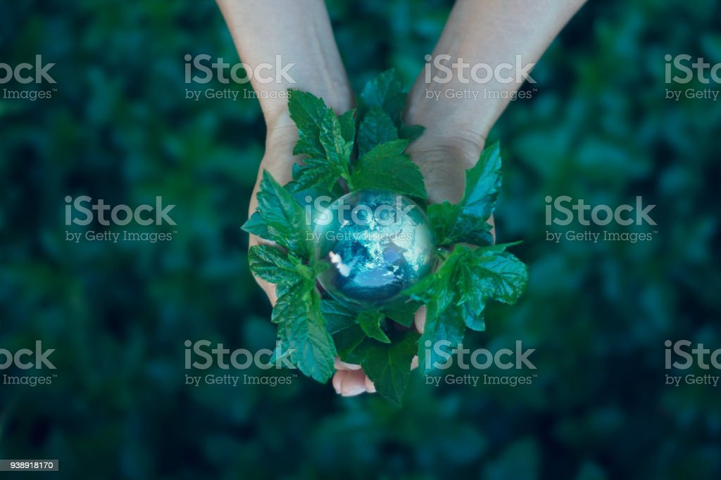 Earth day, Saving energy concept, Hand holding earth on green leaf...