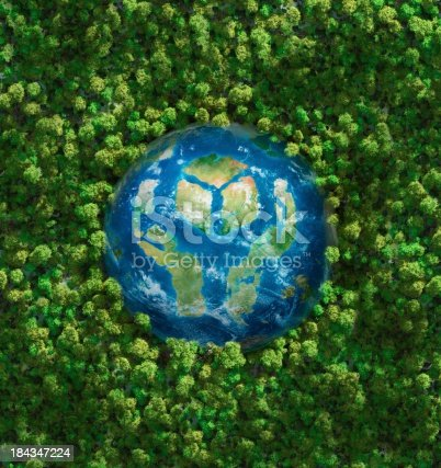 istock Earth In Healthy Forest 184347224