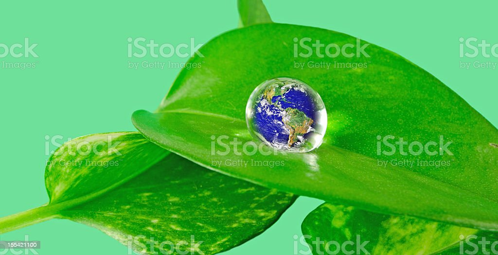 NASA Earth in Water on  Leaf royalty-free stock photo