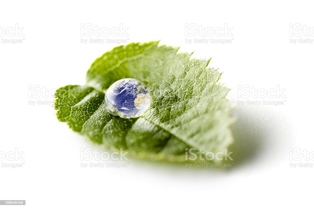 Earth On Green Leaf - Nature Water Environment Bizarre stock photo