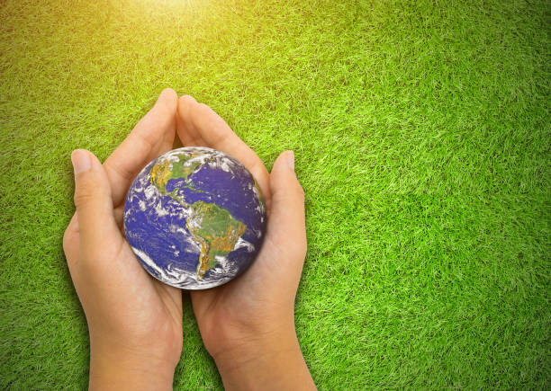 Earth planet in  asian Children hand green grass background stock photo