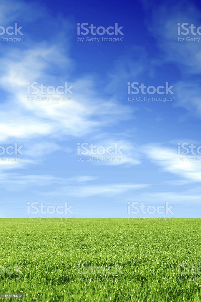 earth & sky: grass royalty-free stock photo