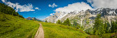Earth trail through tranquil meadow wildflowers swaying in the summer breeze overlooked by Alpine peaks and pinnacles under panoramic blue skies, Val Ferret, Italy. ProPhoto RGB profile for maximum color fidelity and gamut.