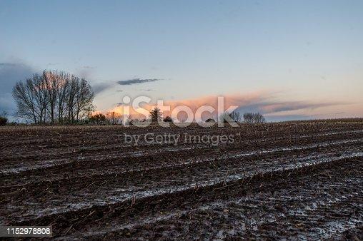 istock East flemish landscape at dusk 1152978808