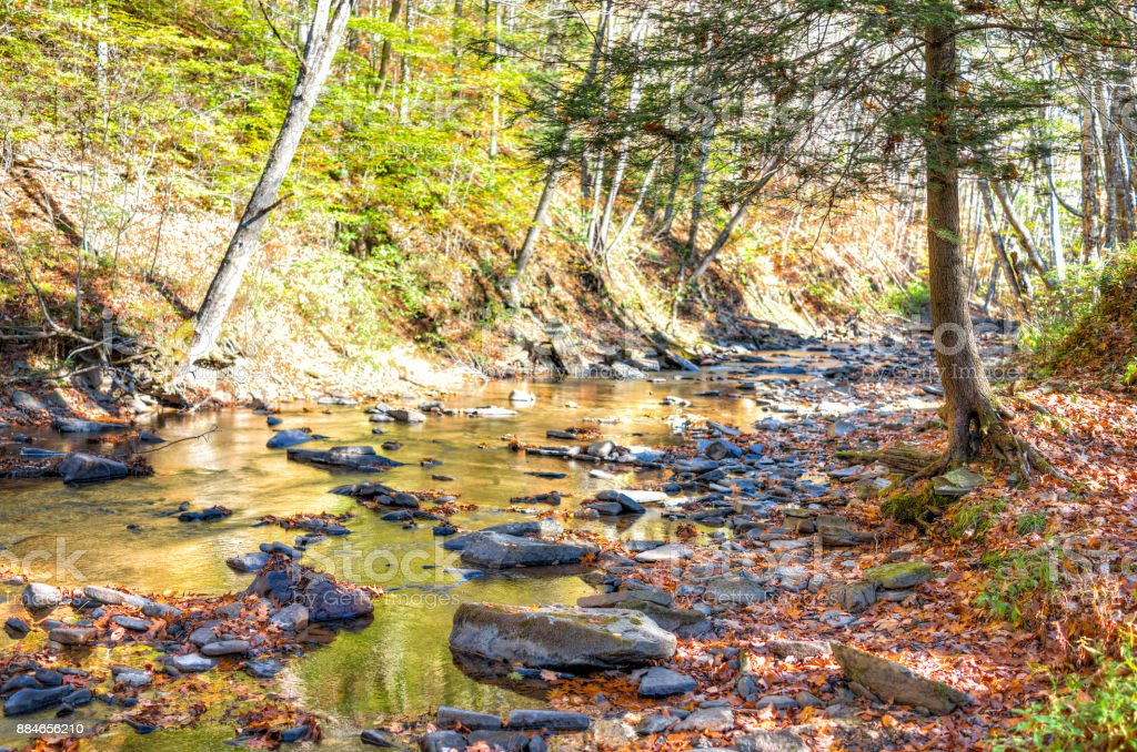 East Fork Greenbrier River creek in West Virginia during colorful autumn with many rocks and fallen leaves by forest in Island Campground stock photo