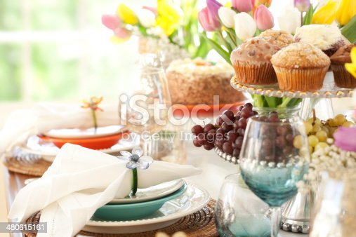 istock Easter and Special Occasion Dining 480615161