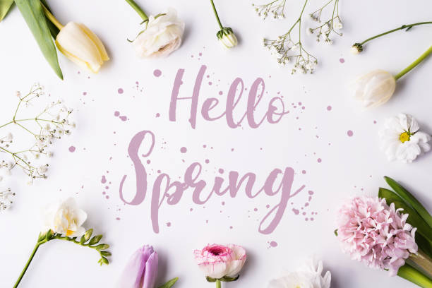 Easter and spring flat lay on a white wooden background. Hello spring phrase and flowers on a white background. Studio shot. Flat lay. springtime stock pictures, royalty-free photos & images