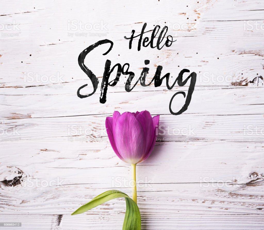 Ostern und Frühling flach lag auf einem weißen Hintergrund aus Holz. – Foto