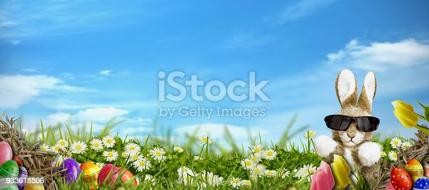 istock Easter background - meadow with Easter eggs and cool rabbit 933618506