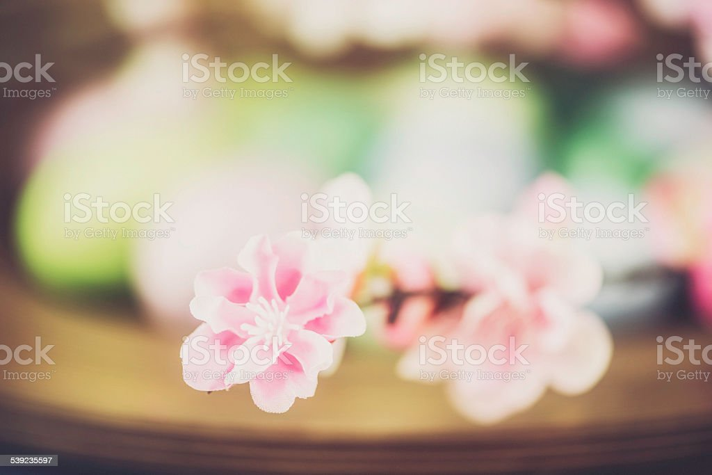 Easter background with colored eggs and blossoms. Cherry blossom foreground royalty-free stock photo