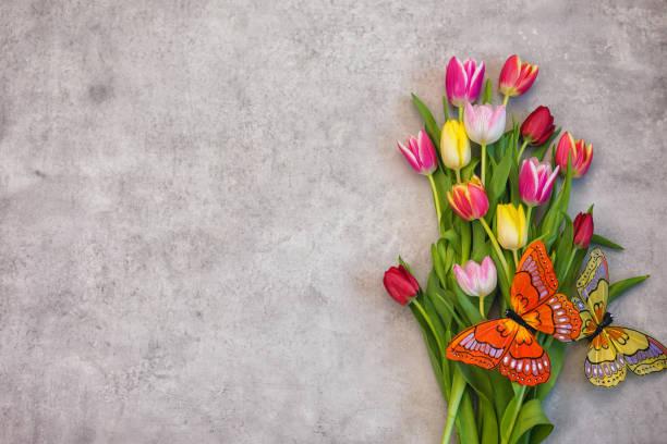 Ostergrund mit farbenfroher Tulpen – Foto