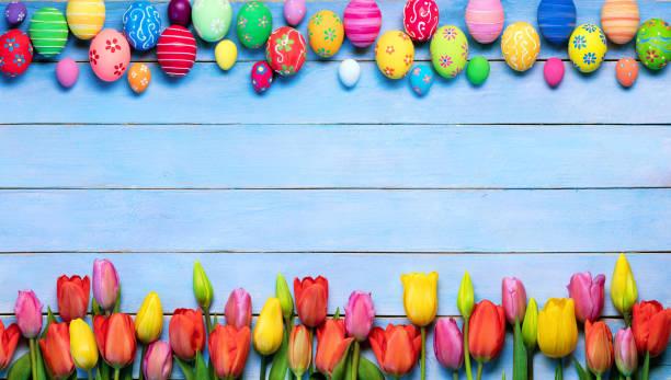 fundo de páscoa com ovos decorados e tulipas - pascoa - fotografias e filmes do acervo