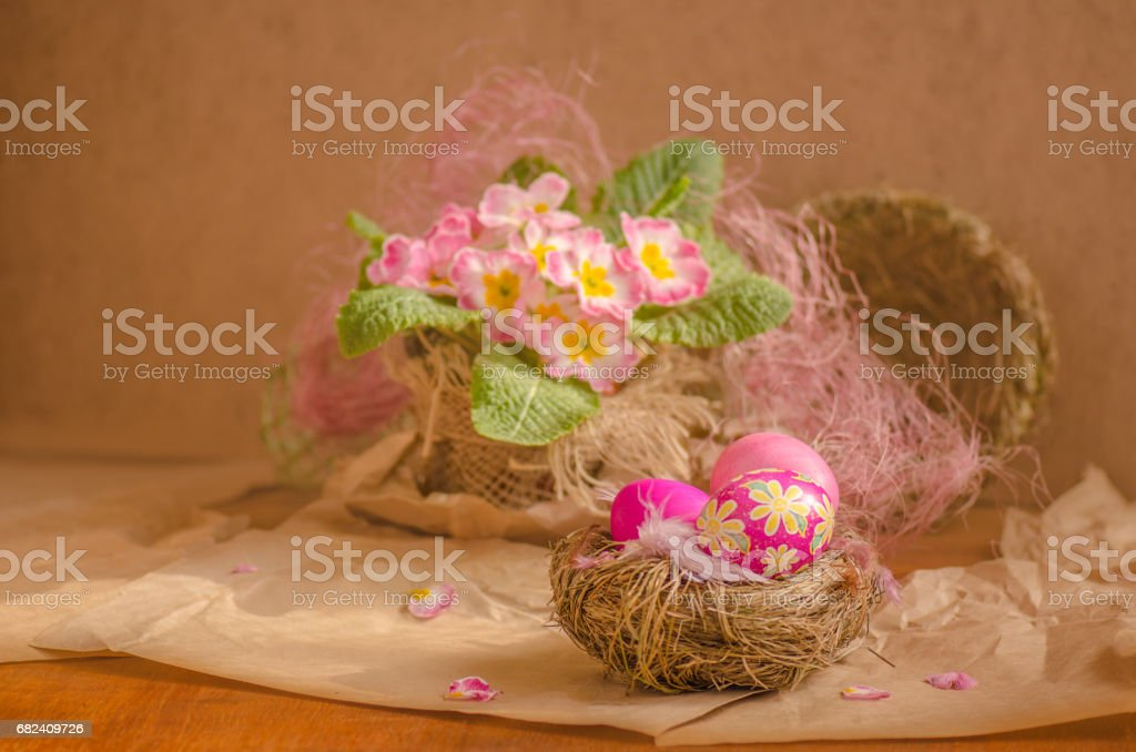 Easter background with pink primrose and easter egg photo libre de droits