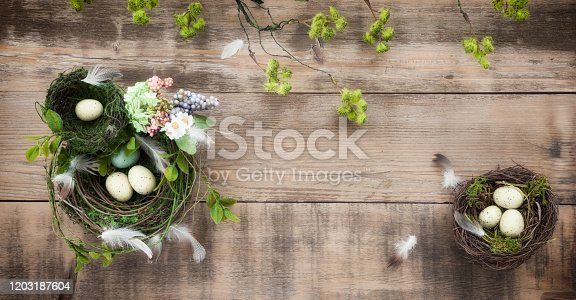 Easter Bird Nest with Easter Eggs on Rustic Wood Background