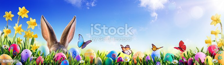 istock Easter - Bunny And Decorated Eggs In Flowery Field 928635814