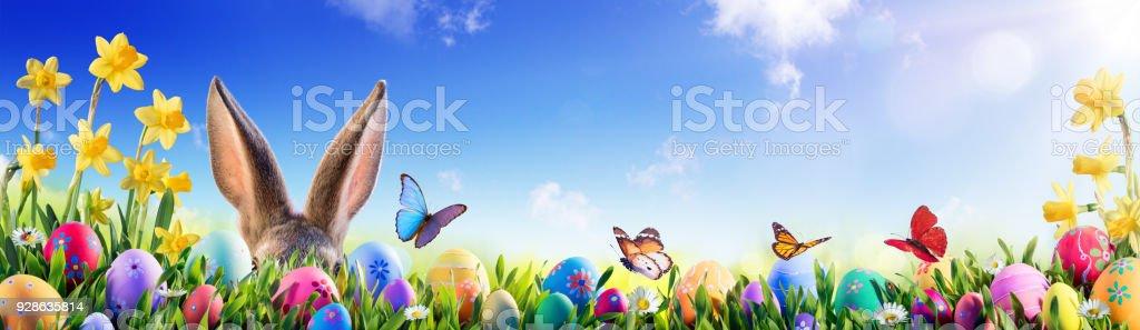 Pâques - lapin et des oeufs décorés en champ fleuri - Photo