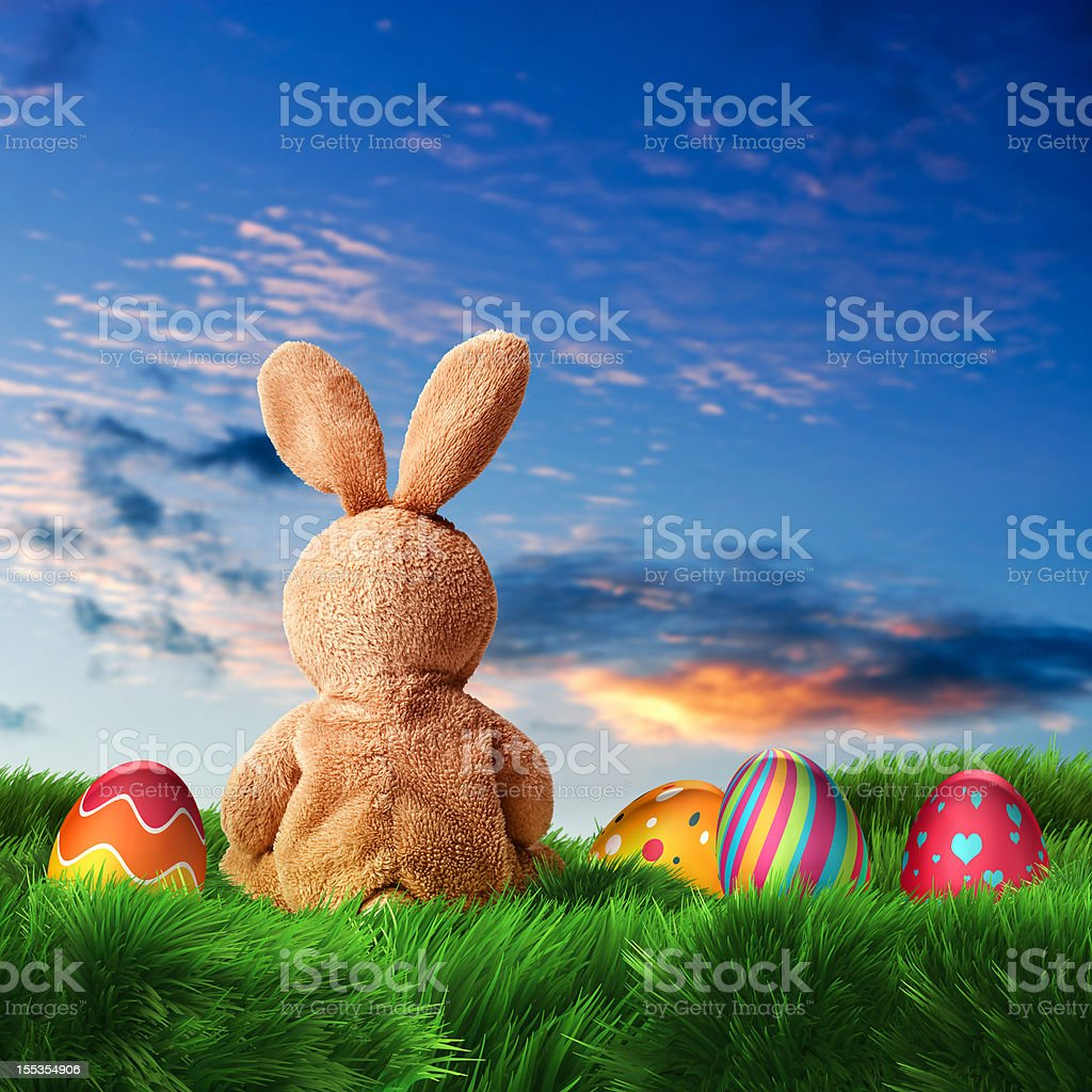 Easter Bunny and Eggs (XXXL) stock photo