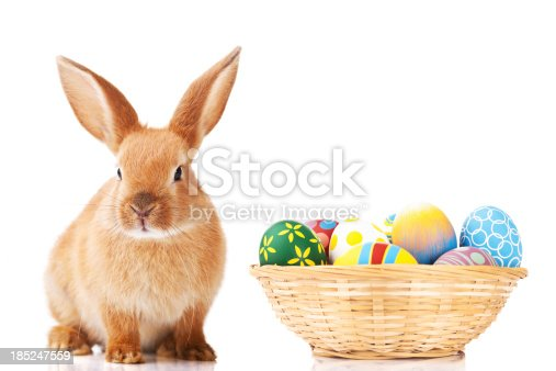istock Easter bunny and eggs 185247559