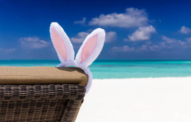 Easter bunny ears on sun chair at a tropical beach setting picture id653023184?b=1&k=6&m=653023184&s=612x612&w=0&h=3d0aj 56c5l8uat6sf3dae0yqu8pxc zi69cu7 uatc=