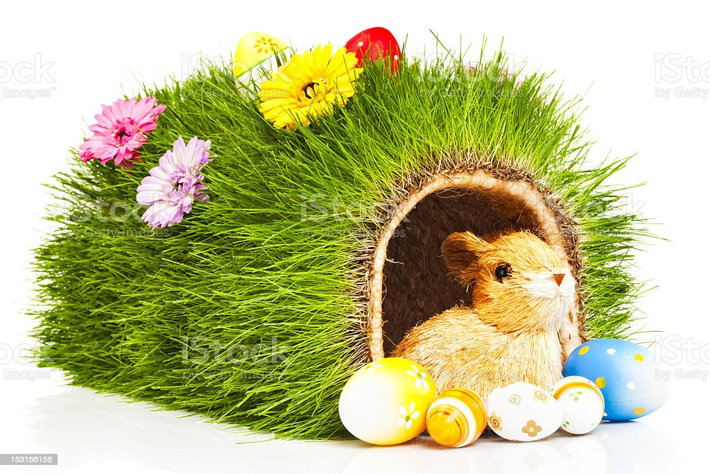 Easter Bunny Hole stock photo
