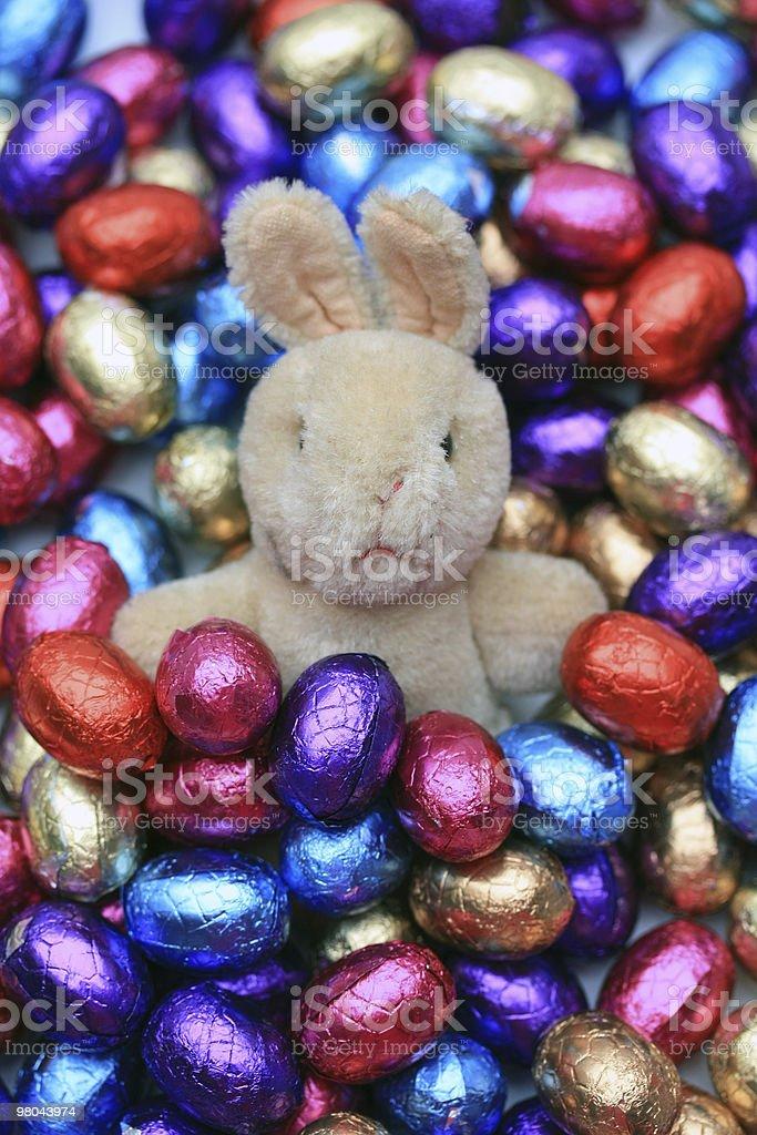 Coniglietto di Pasqua con uova di cioccolato foto stock royalty-free