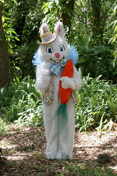 easter bunny in woods - easter bunny stock photos and pictures