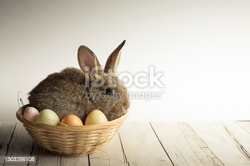 Cute Easter bunny nestled in a basket with colorful eggs on white background. Spring wallpaper with copy space.