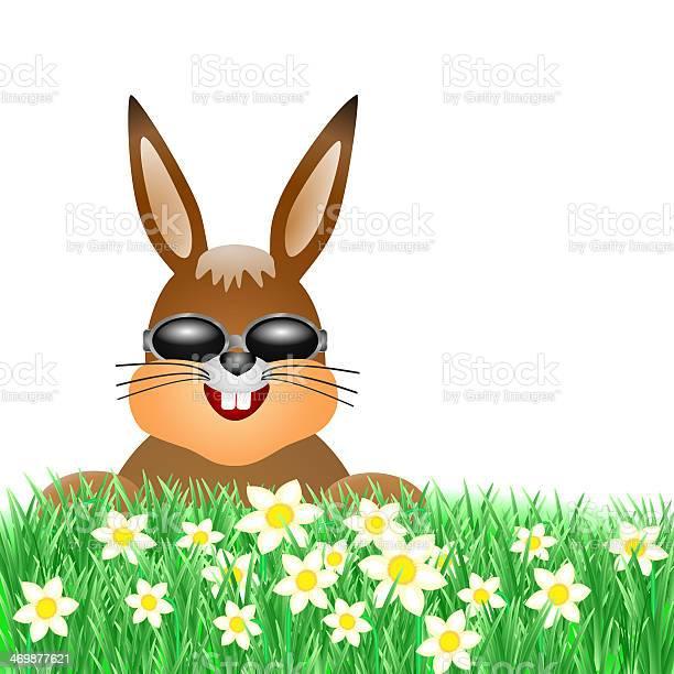 Easter bunny on meadow picture id469877621?b=1&k=6&m=469877621&s=612x612&h=ifm1khcqxymdcvs1 obr6hwkozsnpfzt582wxiaipfu=