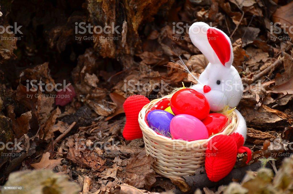 Osterhasen auf der Wiese mit Korb und Ei – Foto