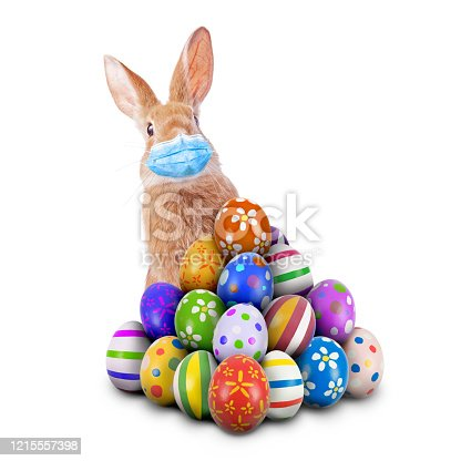 istock Easter Bunny or Easter Rabbit scared of Coronavirus or Covid-19 pandemic with surgical mask hiding and peeking behind a pile of painted Easter Eggs isolated white background aka cut out or cutout 1215557398