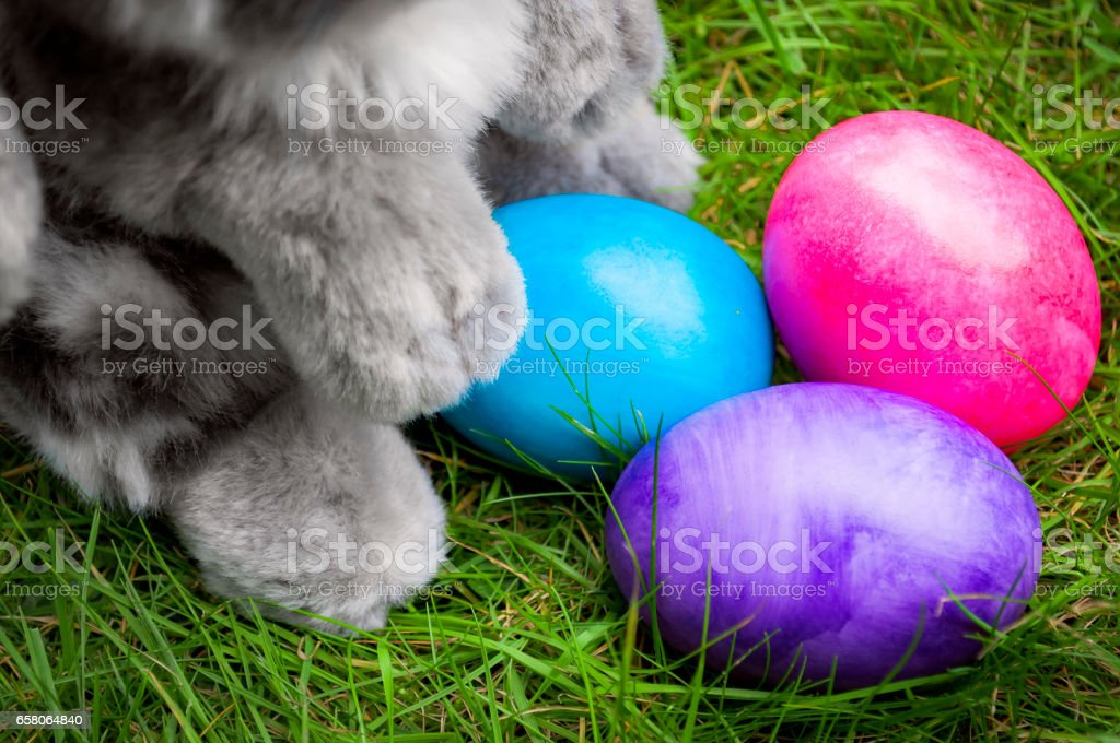 Easter bunny, painted easter eggs and grass royalty-free stock photo