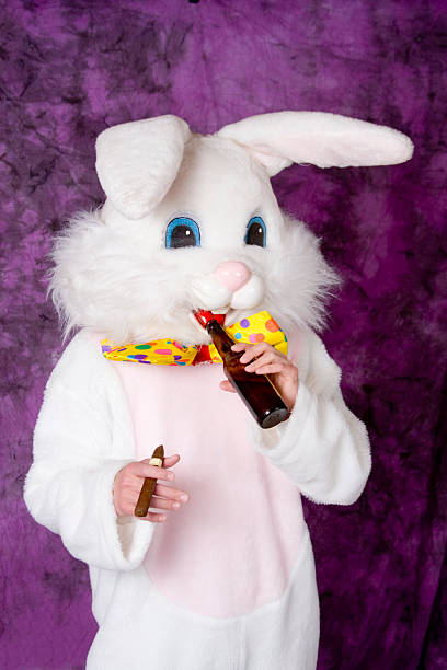 easter bunny - bier kostüm stock-fotos und bilder