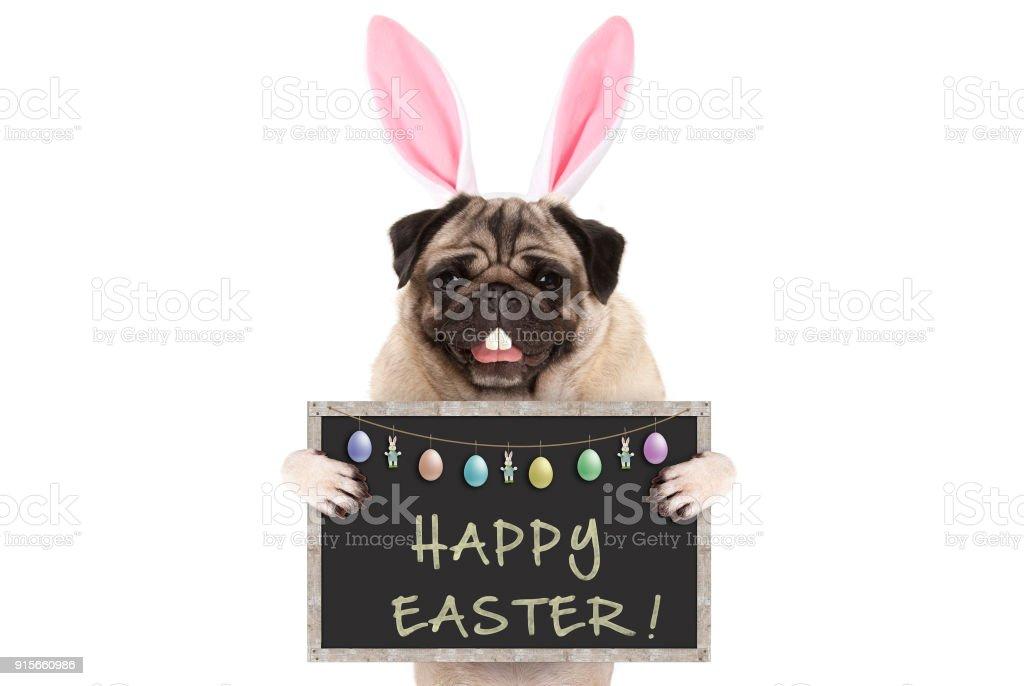 Easter bunny pug puppy hondje met oren, eieren en schoolbord met tekst vrolijk Pasen foto