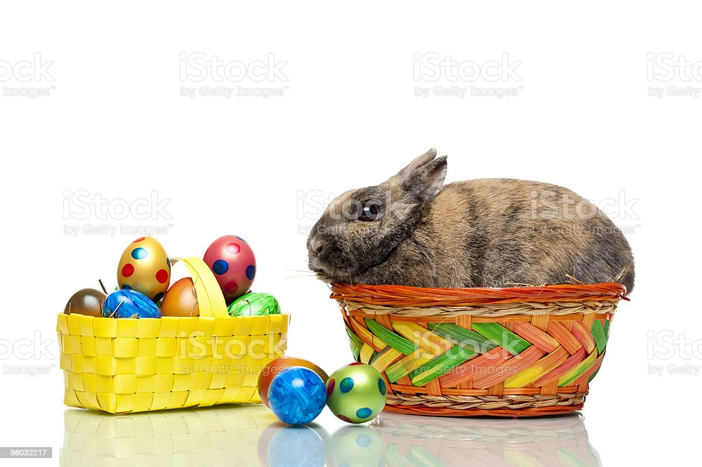 Easter bunny sitting in basket with colorful eggs royalty-free stock photo