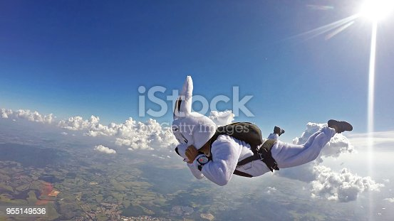 istock Easter bunny Skydiver 955149536