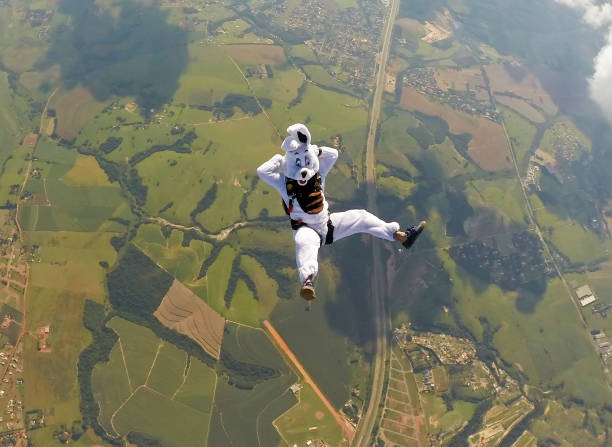 Easter bunny Skydiver stock photo