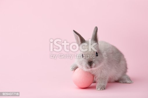 istock Easter bunny with egg on pink background 925407716