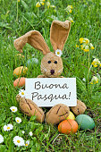 italian easter card with Easter bunny and easter eggs