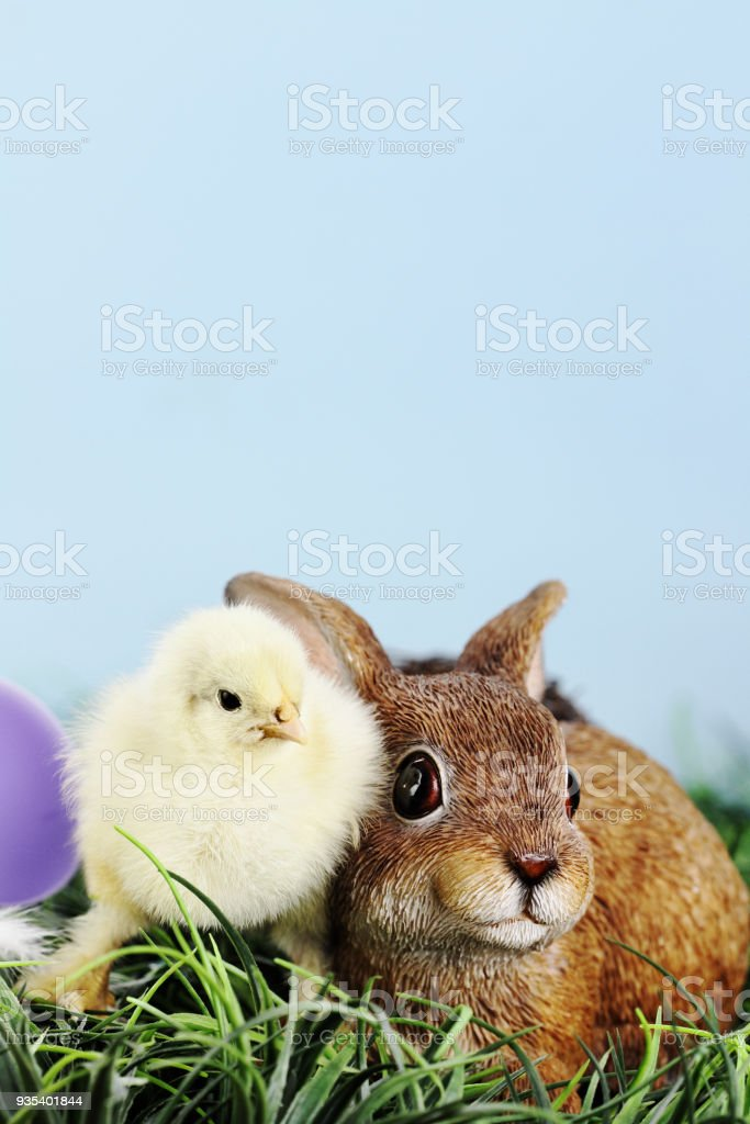 Easter Chick and Bunny stock photo