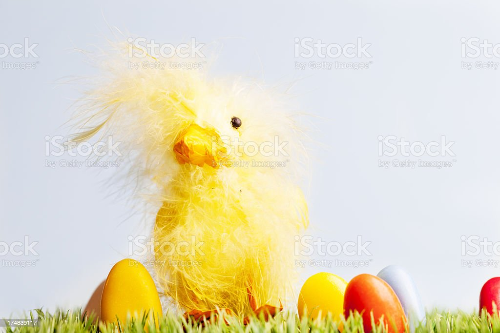 easter chick and candy eggs on grass royalty-free stock photo