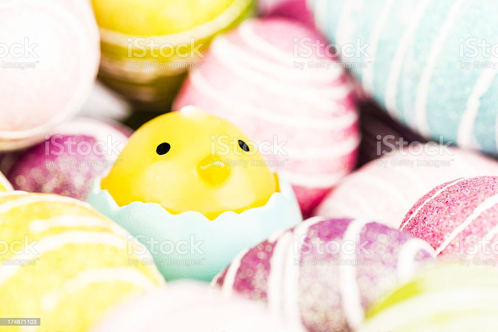 Easter Chick and Eggs royalty-free stock photo