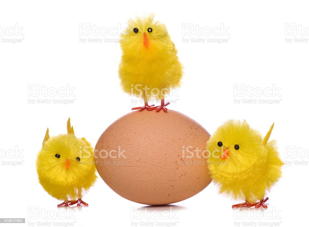 easter chick decorations with an egg cutout stock photo
