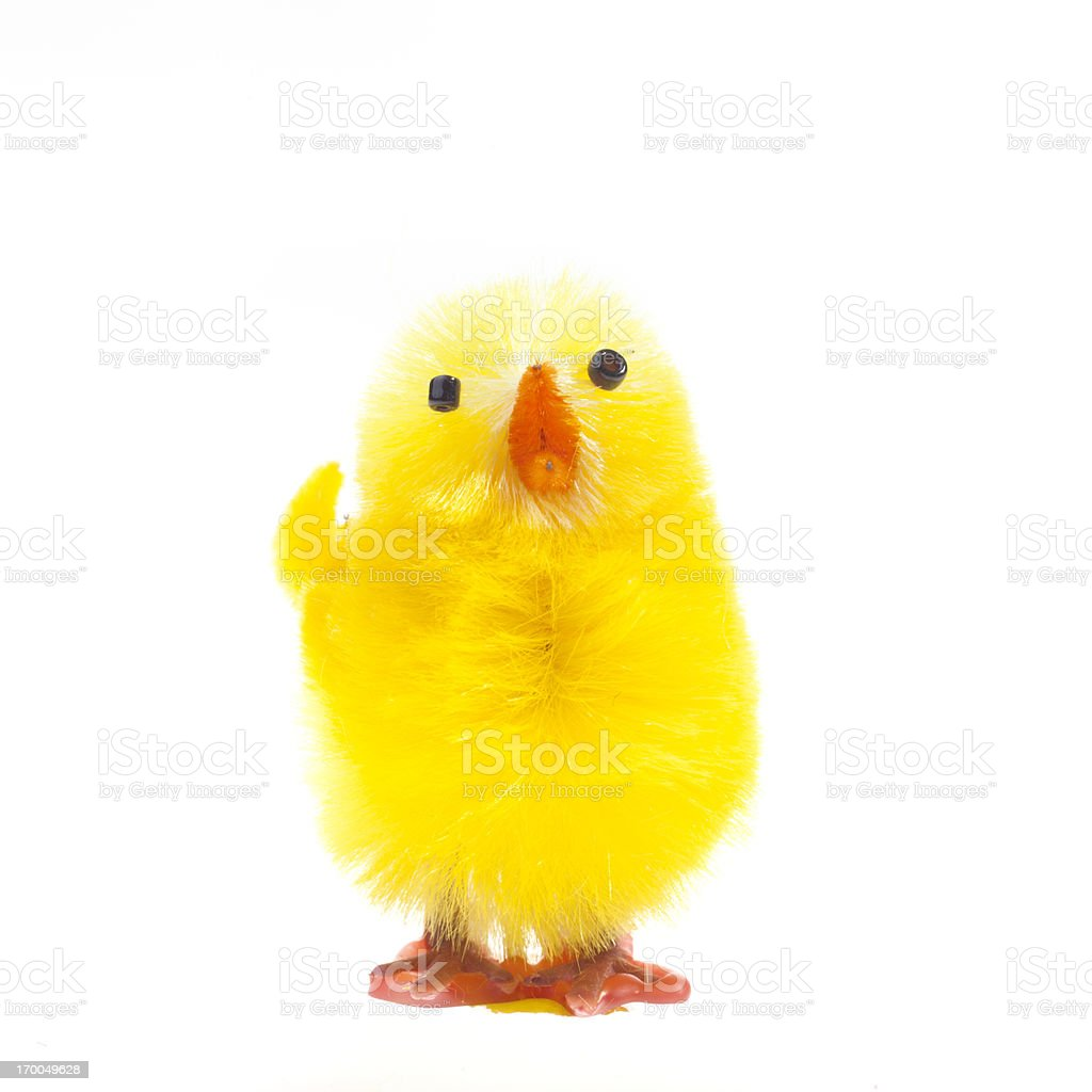 Easter chick isolated on white stock photo