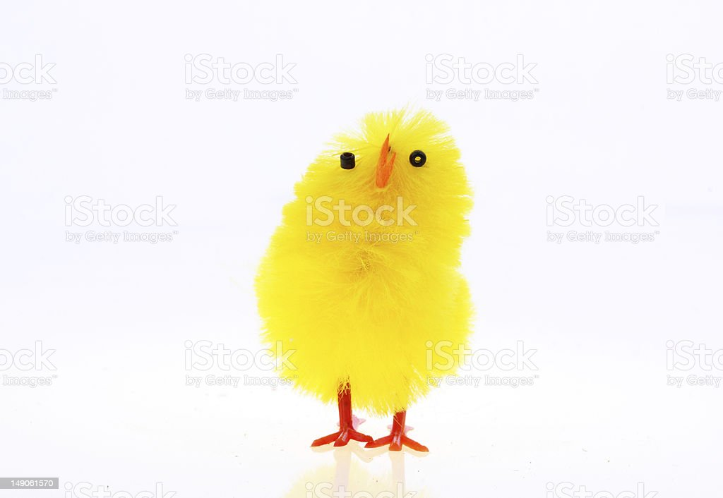 Easter chickens royalty-free stock photo