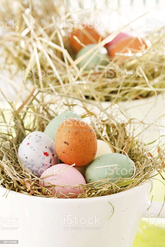 Easter chocolate eggs in the nest royalty-free stock photo