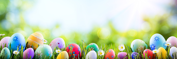 Banner - Painted Eggs In Row On Grass